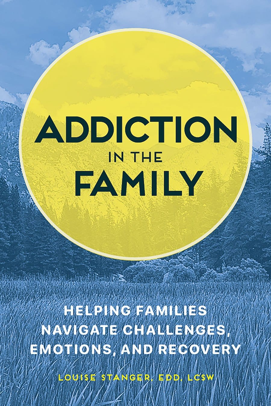 Addiction in the Family Book